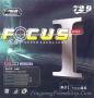 729 Focus 1